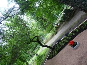 graatsiline õunapuu Koeru