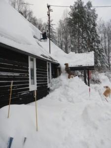 pruun ja mina lumetõrjetöödel jaanuar 2011